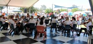 Mount Hawthorn Primary School Orchestra